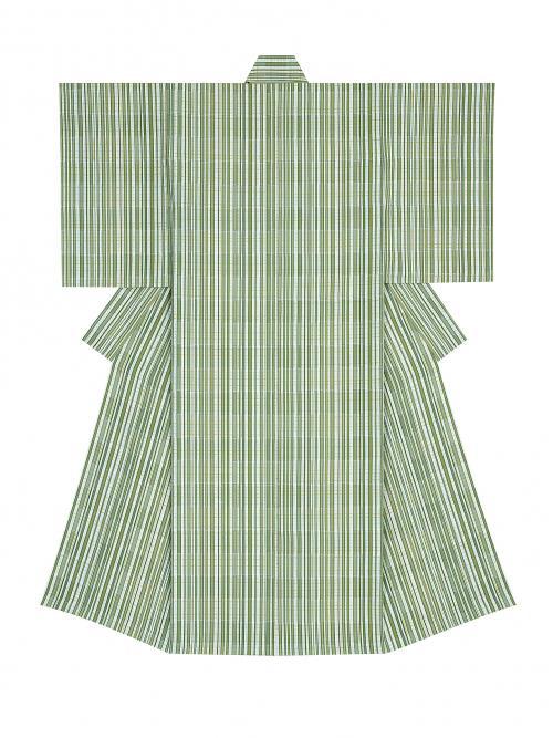 風通織木綿着物「竹林のむこう」